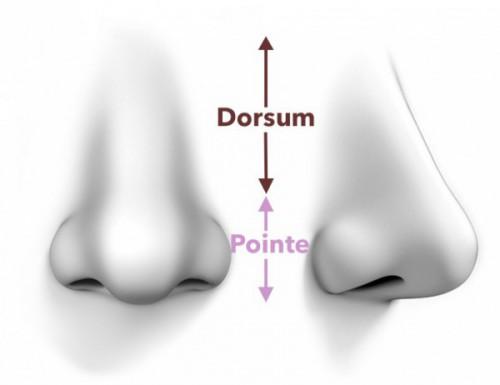 chirurgie pointe du nez
